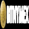 BITNYMEX - Advanced Bitcoin Trading Platform Upto 100x leverage