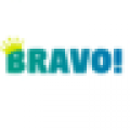 Bravo Best Digital  and Social Media Marketing Company in Chandigarh